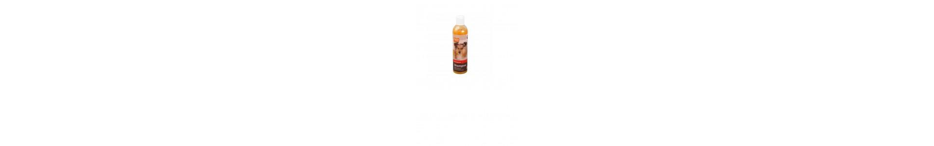 Hunde - Shampoo