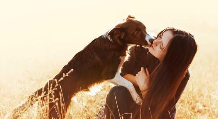 5 Gesten mit denen dir dein Vierbeiner seine Hundeliebe zeigt ...
