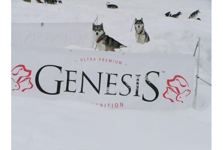 Weltmeister füttern GENESIS